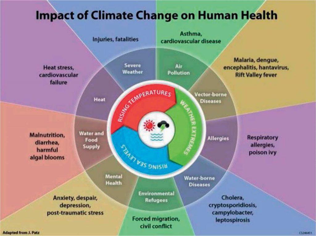 CC and human health